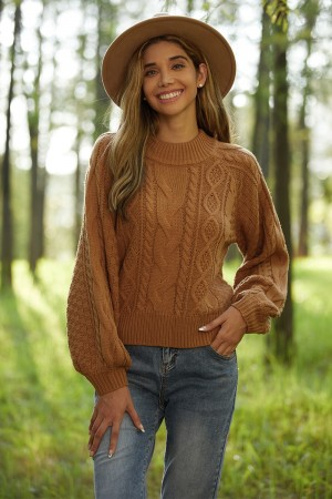 Brown Crew Neck Cable Long Sleeve Loose Sweater